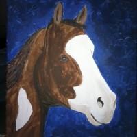 Paint A Horse